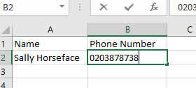 Excel Phone Number - the Missing Zero