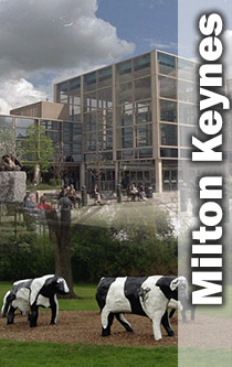 Milton Keynes centre and concrete cows montage