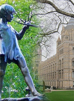 Web Design XHTML, HTML and CSS Training Course Intermediate training course Kensington - Peter Pan Statue in Kensington gardens